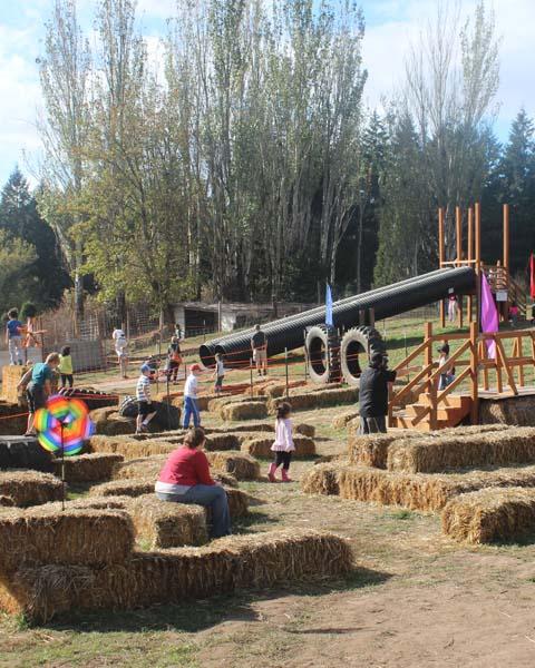 Farm Activities - Slides & Mazes
