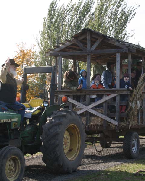 Hay Ride at Plumper Pumpkin Patch & Tree Farm